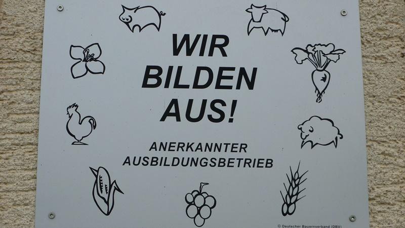 Ausbildungsbetrieb Rems-Murr-Schwein Rainer, Andreas Mueller