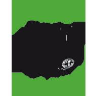 logo Rems-Murr-Schwein