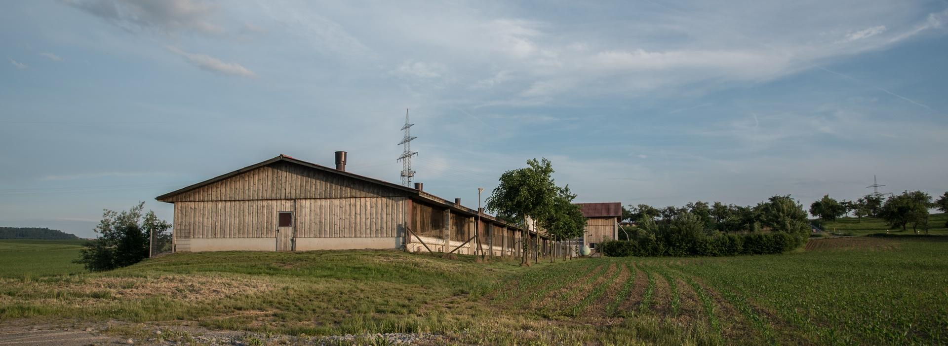 Schweinemaststall vom Norden Andreas, Rainer Mueller Rems-Murr-Schwein